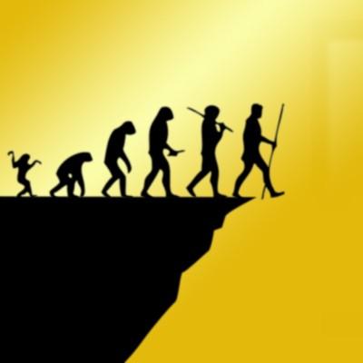 darwin awards dümmsten todesfälle genpool unfälle evolution tod sterben beste dumm idioten selbstmorde pech gene fortpflanzung tödlich