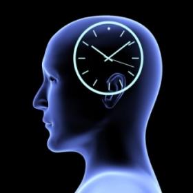 chronobiologie innere uhr blaues licht hell dunkel therapie sonne tag nacht winter winterdepression studien forschung depression